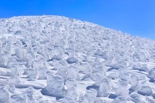 蔵王 地蔵山の樹氷の写真素材 [FYI02091694]