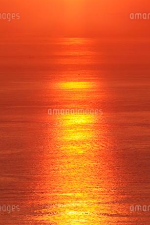 七宝山から望む瀬戸内海の夕景の写真素材 [FYI02091818]