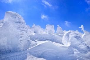 蔵王 地蔵山の樹氷の写真素材 [FYI02091915]