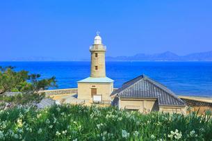 男木島灯台と水仙に瀬戸内海の写真素材 [FYI02091951]