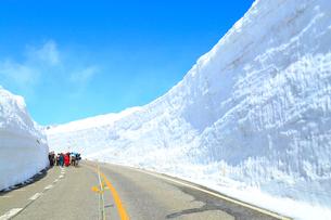 立山黒部 雪の大谷の写真素材 [FYI02091998]