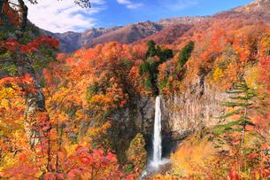 白水滝と紅葉の写真素材 [FYI02092100]