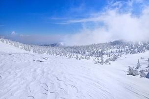 蔵王 地蔵山の雪紋と樹氷原の写真素材 [FYI02092164]