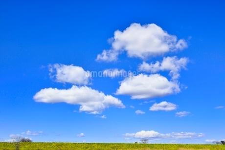 雲と青空にナノハナ咲く土手の写真素材 [FYI02092268]