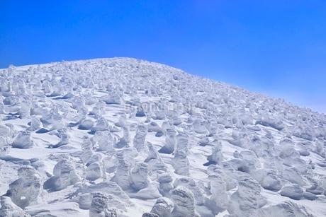 蔵王 地蔵山の樹氷の写真素材 [FYI02092329]
