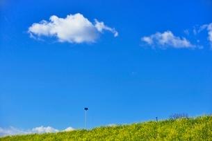 雲と青空にナノハナ咲く土手の写真素材 [FYI02092544]