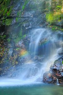 琵琶の滝の写真素材 [FYI02092574]