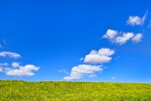 雲と青空にナノハナ咲く土手の写真素材 [FYI02092735]