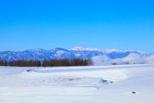冬の霧ヶ峰高原より望む乗鞍岳の写真素材 [FYI02092821]