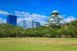 西の丸庭園から望む大阪城天守閣と高層ビル群の写真素材 [FYI02092950]