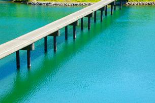四万十川と三里沈下橋の写真素材 [FYI02092964]