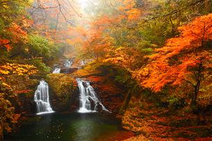 赤目四十八滝・荷担滝と紅葉の写真素材 [FYI02093047]