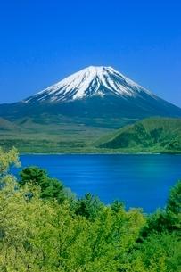 新緑の本栖湖と富士山の写真素材 [FYI02093195]