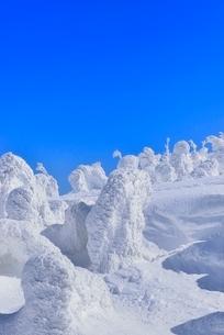 蔵王 地蔵山の樹氷の写真素材 [FYI02093242]