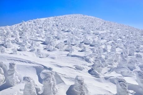 蔵王 地蔵山の樹氷の写真素材 [FYI02093289]