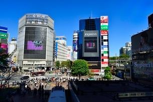 渋谷駅前の写真素材 [FYI02093304]