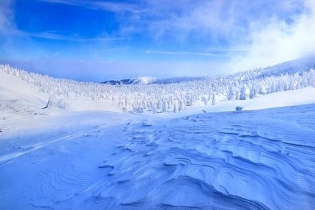 蔵王 地蔵山の雪紋と樹氷原の写真素材 [FYI02093383]