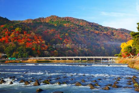 嵐山・渡月橋と紅葉の写真素材 [FYI02093457]