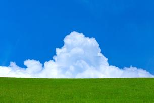 緑の草原と青空の写真素材 [FYI02093503]