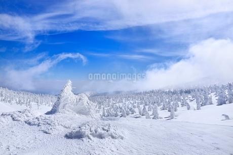 蔵王 地蔵山の樹氷と樹氷原の写真素材 [FYI02093504]