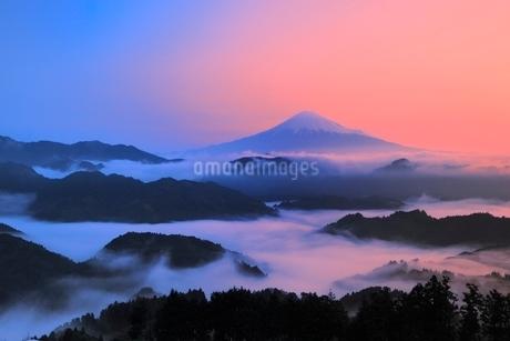 清水吉原の雲海に朝焼けの富士山の写真素材 [FYI02093595]