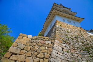 青空と明石城の石垣の写真素材 [FYI02093855]
