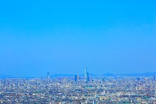 あべのハルカスと大阪の街並みの写真素材 [FYI02093861]