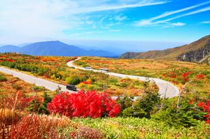 秋の立山黒部アルペンルートの写真素材 [FYI02093917]
