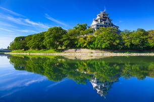岡山城の写真素材 [FYI02093974]