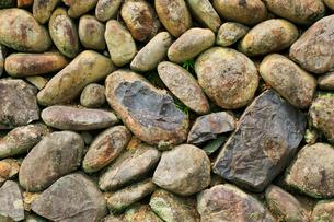 棚田の石積みの写真素材 [FYI02094052]