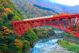 紅葉の黒部峡谷 トロッコ電車と新山彦橋の写真素材 [FYI02094147]
