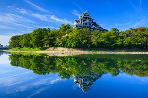 岡山城の写真素材 [FYI02094172]