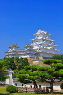 姫路城と大天守の写真素材 [FYI02094202]