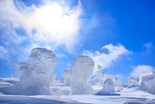 蔵王 地蔵山の樹氷と太陽の写真素材 [FYI02094324]