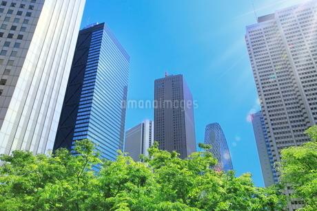 新緑の新宿副都心ビル群と光芒の写真素材 [FYI02094561]
