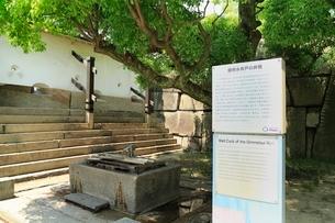 大阪城 銀明水井戸の井筒の写真素材 [FYI02094564]