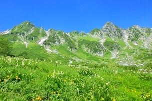 高山植物咲く夏の千畳敷カールと宝剣岳の写真素材 [FYI02094599]