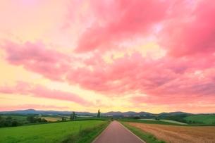 美瑛 道と夕焼け雲の写真素材 [FYI02094628]