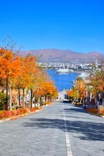 秋の函館 紅葉の八幡坂と函館港の写真素材 [FYI02094663]