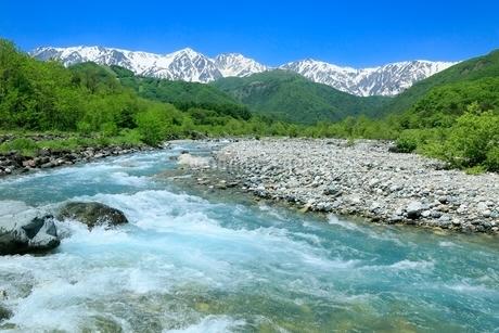 新緑の松川と残雪の白馬三山の写真素材 [FYI02094693]