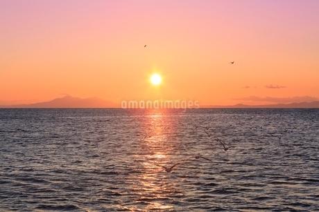 根室海峡と北方領土・国後島に朝日の写真素材 [FYI02094731]