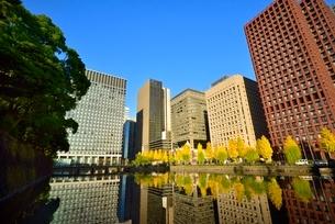 和田倉濠に映る日比谷通りのイチョウ並木と丸の内ビル群の写真素材 [FYI02094790]