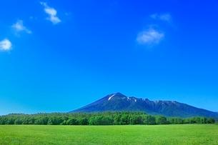 新緑の草原と岩手山の写真素材 [FYI02094876]