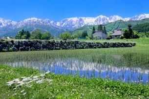 水田に映る集落と白馬の山並みの写真素材 [FYI02094888]