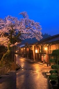 木曽路 妻籠宿とサクラの夜景の写真素材 [FYI02095045]