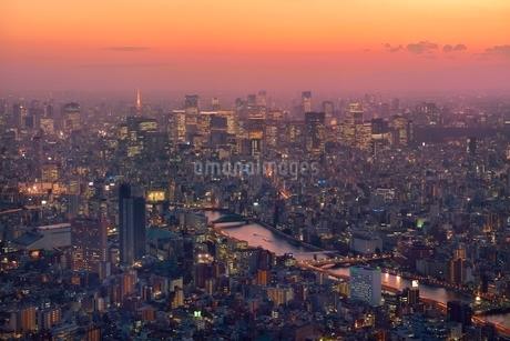 東京スカイツリーより夕焼けと靄かかるビル群夜景に隅田川の写真素材 [FYI02095245]