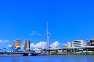 スカイツリーと隅田川に入道雲の写真素材 [FYI02095292]