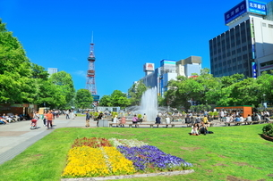 札幌,新緑の大通公園とさっぽろテレビ塔の写真素材 [FYI02095321]