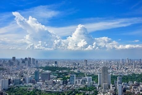 六本木ヒルズより東京の街並みと入道雲 新宿方面望むの写真素材 [FYI02095458]
