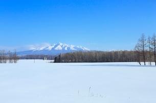 雪原と斜里岳の写真素材 [FYI02095514]